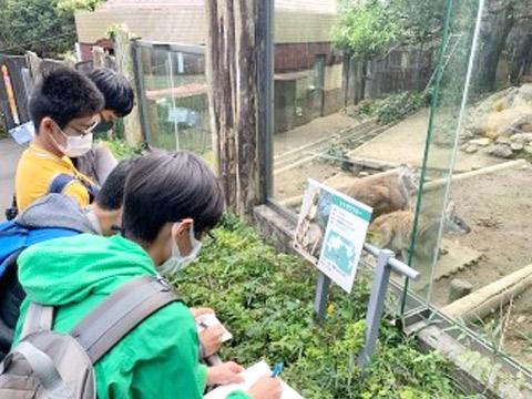 動物の説明文を読む生徒たち