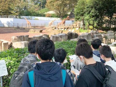 キリンを観察する生徒たち