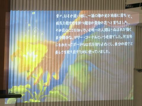 劇中、舞台横の壁にプロジェクターで映像や日本語の解説を映し出し、観客が「ラプンツェル」の世界に引き込まれるように工夫をしています。途中、事前に撮影された動画を流してストーリーが展開されるなど、メリハリのある構成で見ている人を飽きさせません。