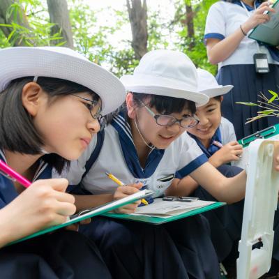 日本女子大学附属中学校・高等学校