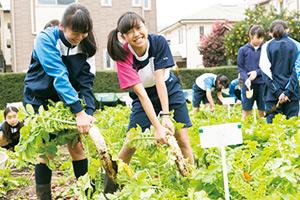 恵泉の園芸教育