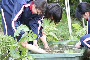 鷗友の園芸教育