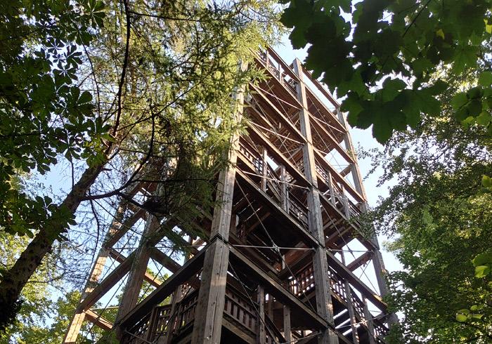 森のステーションの塔