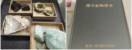 標本室の収蔵品