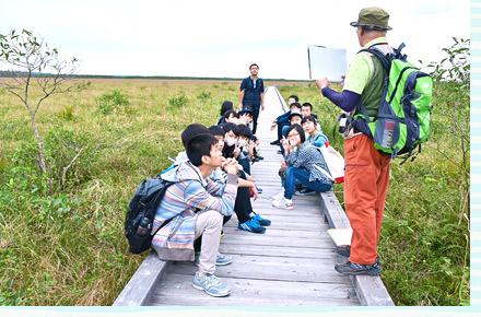 釧路湿原のようす