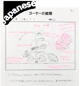 観察記録(日本語)