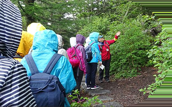森を散策する生徒たち