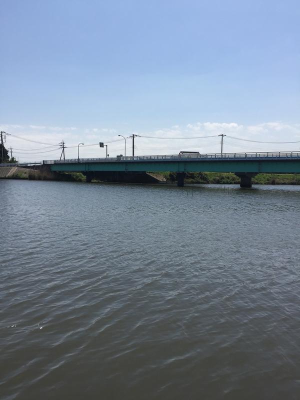 ブラックバス 新利根川 2016年4月19日 11:50の画像