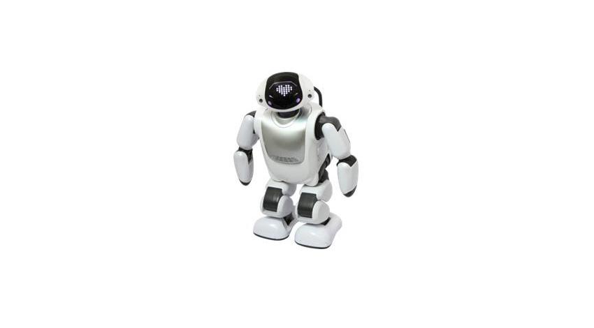 DMM.com、いろいろレンタルで法人向けロボットレンタル開始