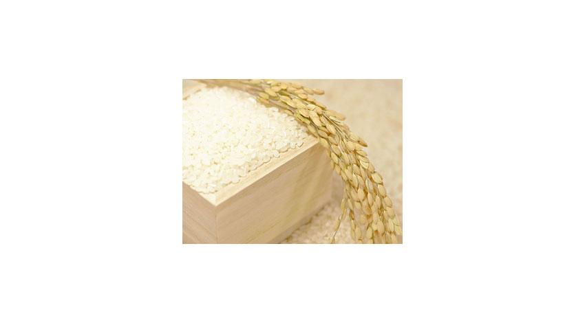 米ライフ、IoT米びつセンサーで新鮮なお米をタイムリーに配送