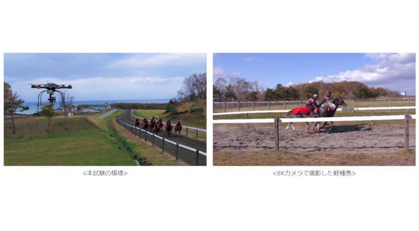 ATR・KDDI・シャープ・東京大学など、5Gと8Kライブ映像を活用して軽種馬の育成支援に向けた実証試験を実施