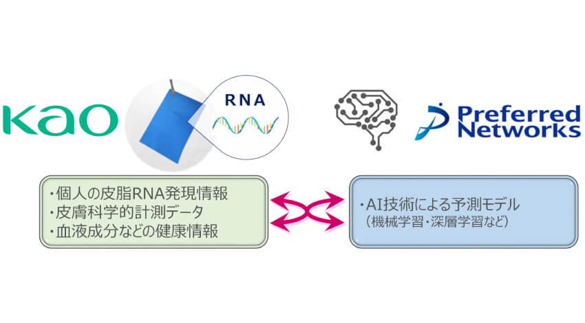 花王とPreferred Networksが協働プロジェクト開始、皮脂RNAとAIを活用した美容カウンセリングサービスを構築