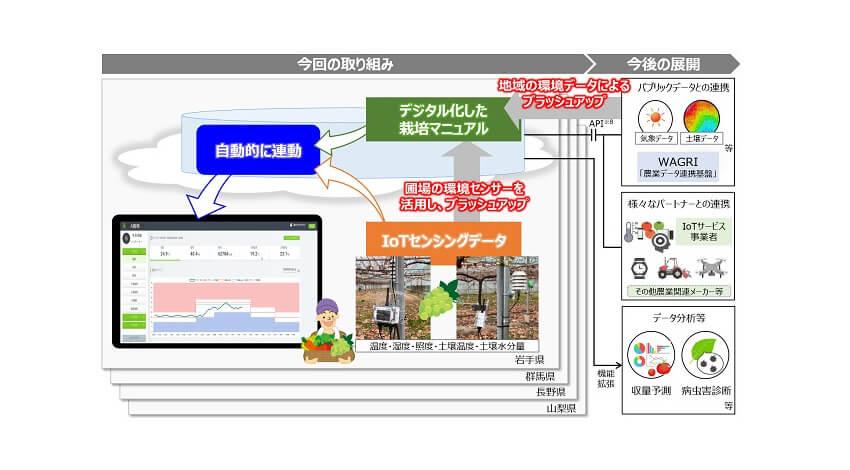 NTTグループと農研機構、データ駆動型農業の地域実装に向けて協働
