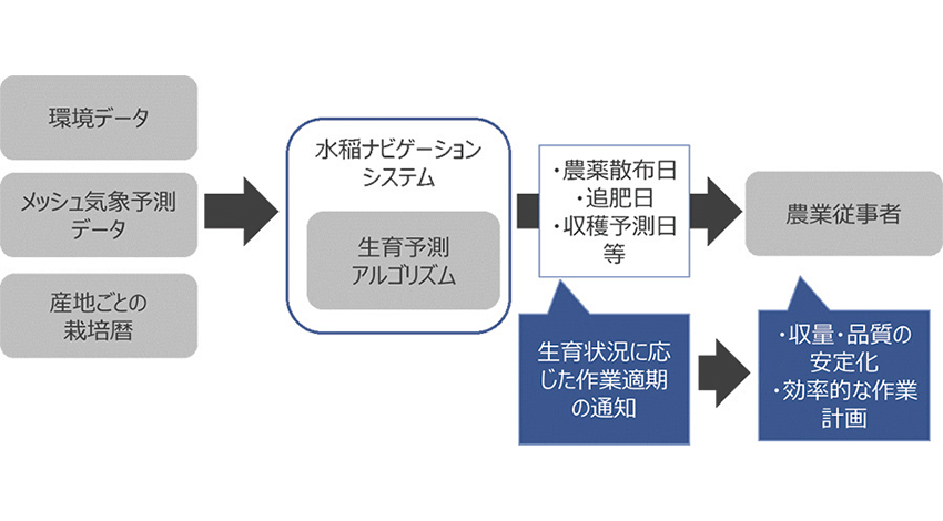 NTTデータと神明ホールディングス、水稲栽培管理を支援する「水稲ナビゲーションシステム」の開発と実証を開始