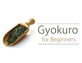 Japanese Green Tea Gyokuro for Beginners