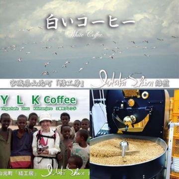 IDAKI SHIN Andromeda Ethiopia Coffee YLK White (Green Coffee) 100g  Beans