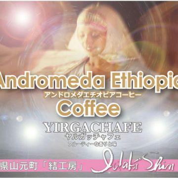 IDAKI SHIN Andormeda Ethiopia Coffee YIRGACHAFE 100g Beans