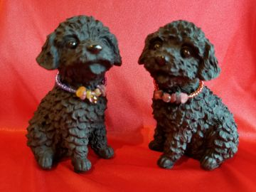 Toy poodle set