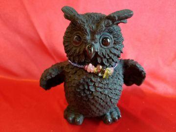 Owl (short-winged)