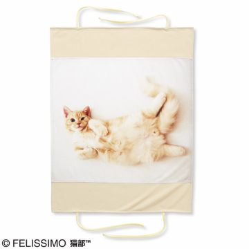 FELISSIMO NEKOBU Navel occupied the bed in heaven appearance! Association of Pooh-chan pillow cover, Goron