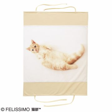 FELISSIMO NEKOBU Navel occupied the bed in heaven appearance! Association of Pooh-chan pillow cover