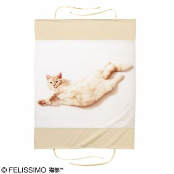 FELISSIMO NEKOBU Navel occupied the bed in heaven appearance! Association of Pooh-chan pillow cover, It extends ~
