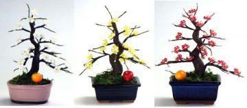 Yamakyu Plum Blossoms Original Beaded Bonsai Tree Kit, Huang Mei