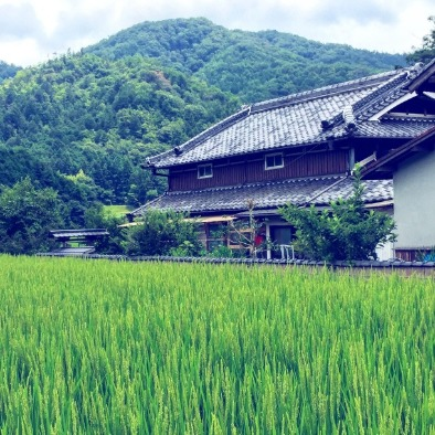 Op-Ed] The Unchecked Wonders of Small Town Life in Japan