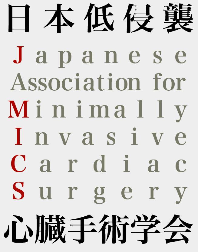Japan MICS Summit