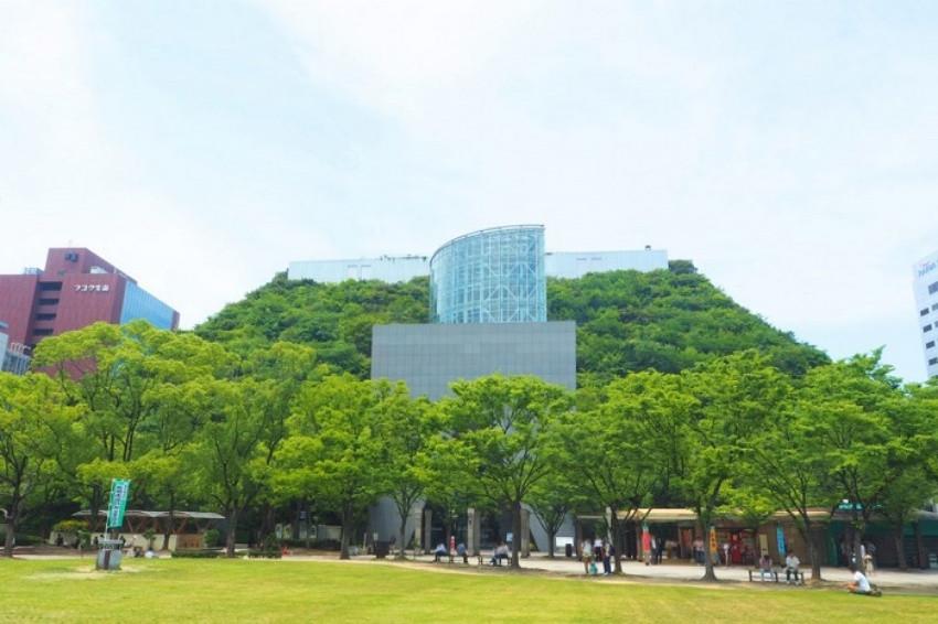 長成巨大森林的建築物!福岡中心的森之庭園「福岡 STEP GARDEN」