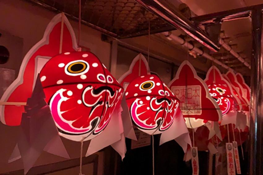 青森縣弘南鐵道推出金魚燈籠列車,夜晚點燈行駛氛圍超魔幻!