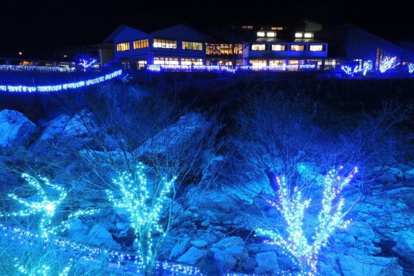 超級夢幻的高知縣「光之祭」,點亮各地美景傳達「對未來的希望」!