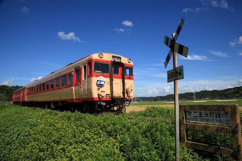 攝影愛好者聖地,超人氣夷隅鐵道第二五之町平交道,隨手一拍都是IG美照!