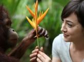 [安倍宏行]<滝川クリステルさん、財団立ち上げ>動物愛護に本腰 2020年までに「生き物たちとの共存を」