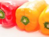 [一色ふみ]【野菜は余すことなく食い尽くせ】~環境にも家計にも優しい「エコクッキング」という考え方~