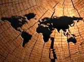 [岩田太郎]【戦前日本と現代中国の「アジア人のためのアジア」】~米中もし戦わば 3~