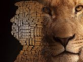 トランプ大統領は「ライオン」