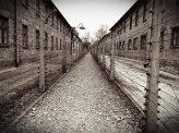 ナチスの戦争犯罪と死刑廃止論 昭和の戦争・平成の戦争 その7