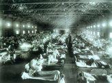 人類と感染症7 スペイン風邪、西部戦線異状あり