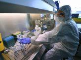 全国民PCR検査、今すべき?