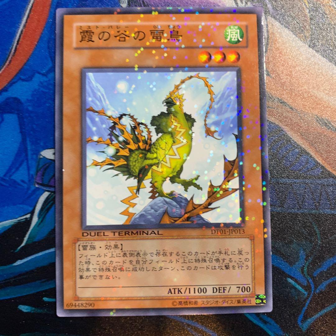 【最終値下】霞の谷の雷鳥