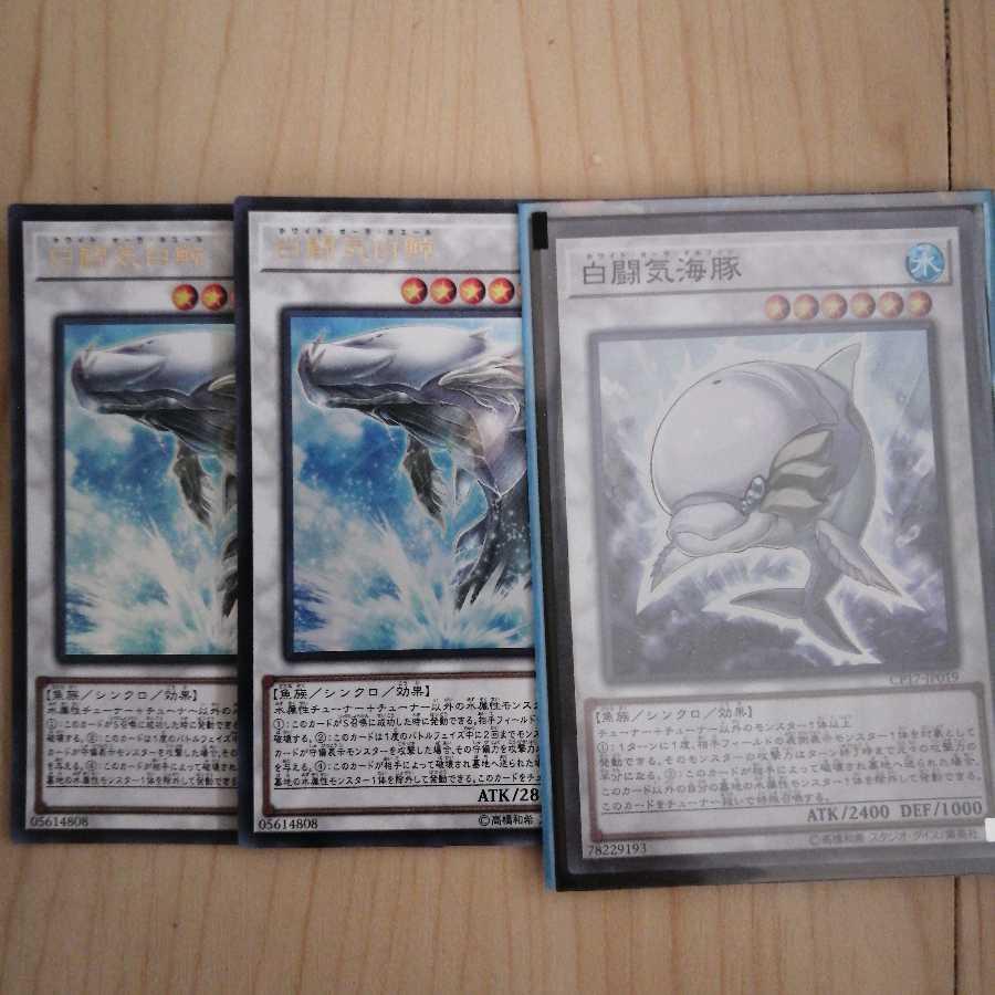 白闘気白鯨 白闘気海豚 ホワイト