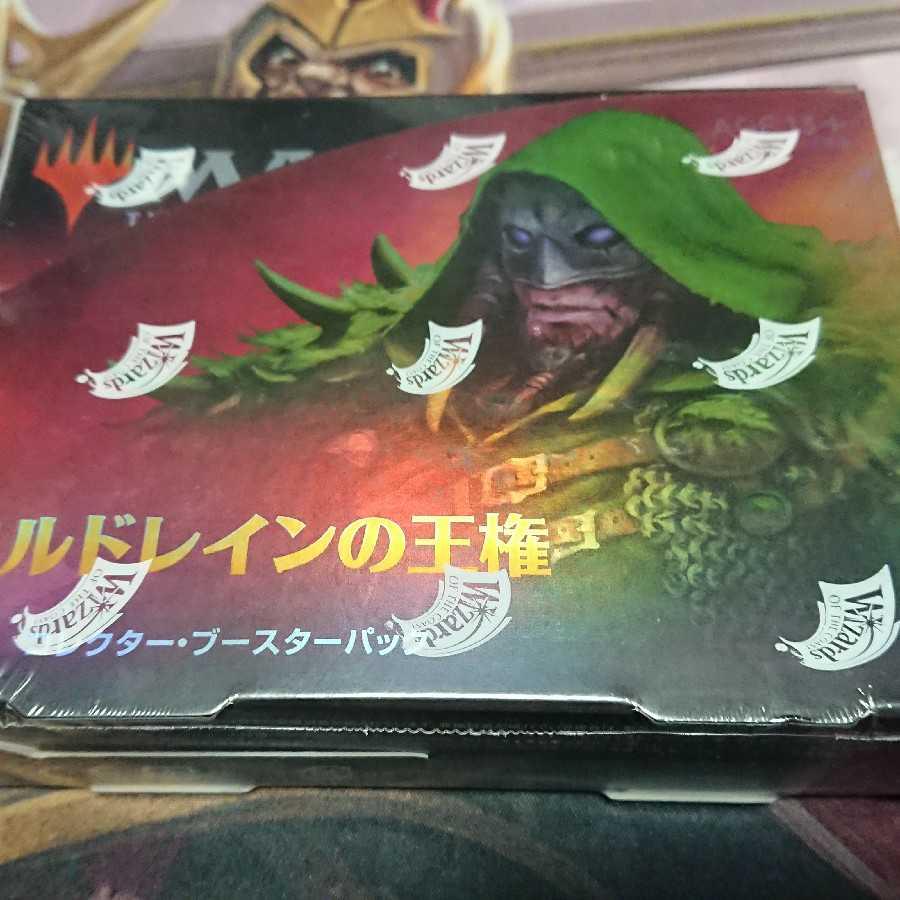 エルドレインの王権 コレクターブースター 1ボックス 日本語版 未開封 新品