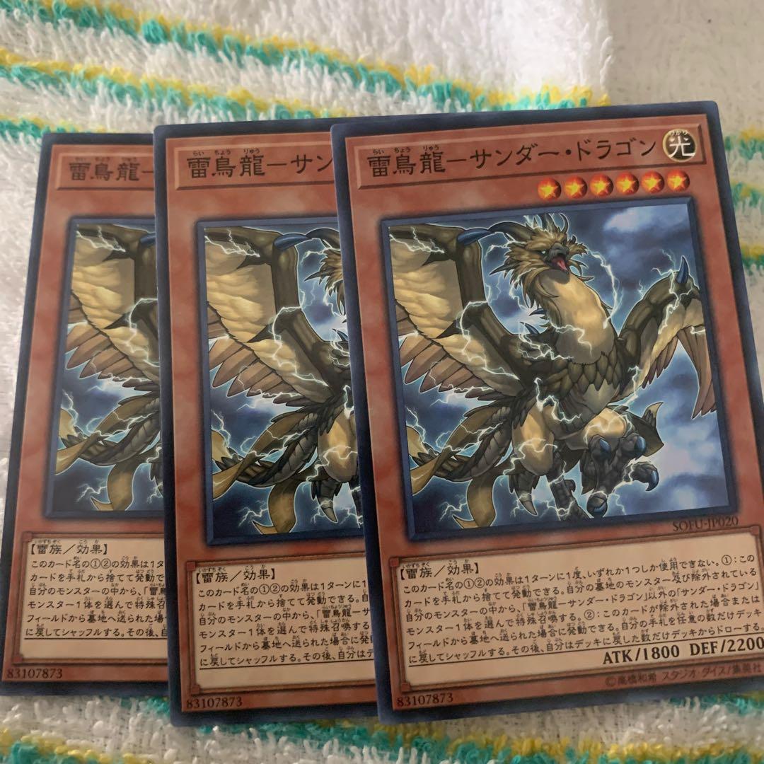 雷鳥龍ーサンダー・ドラゴン