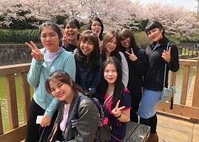 タイ人技能実習生と桜の名所へ