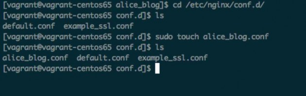 conf_d_and_make_alice_blog