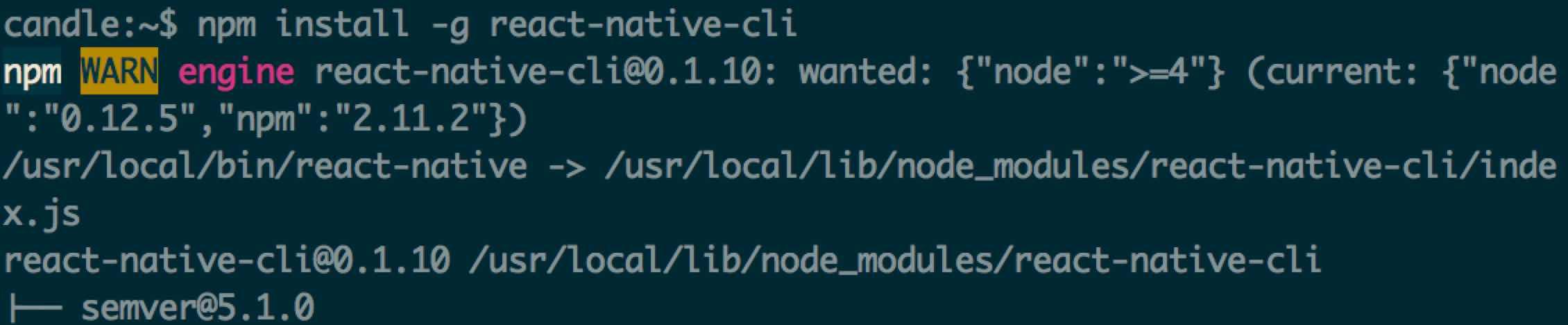 install_react_native_cli