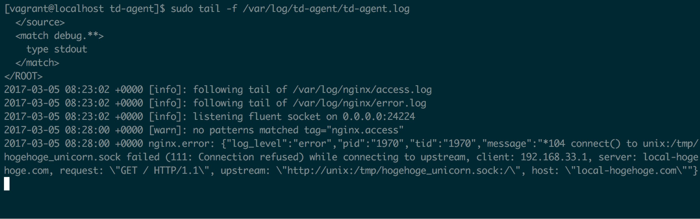 How to get nginx error log and access log with td-agent – joppot