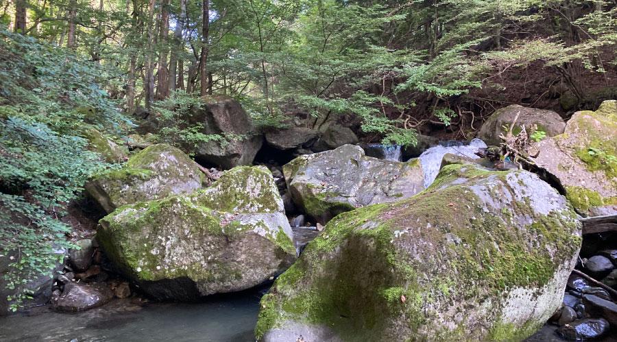薄暗い渓流
