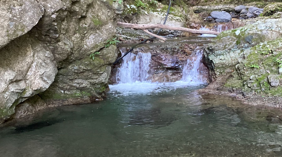 渓流のススメ